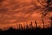16th Oct 2020 - Smoldering Sunrise