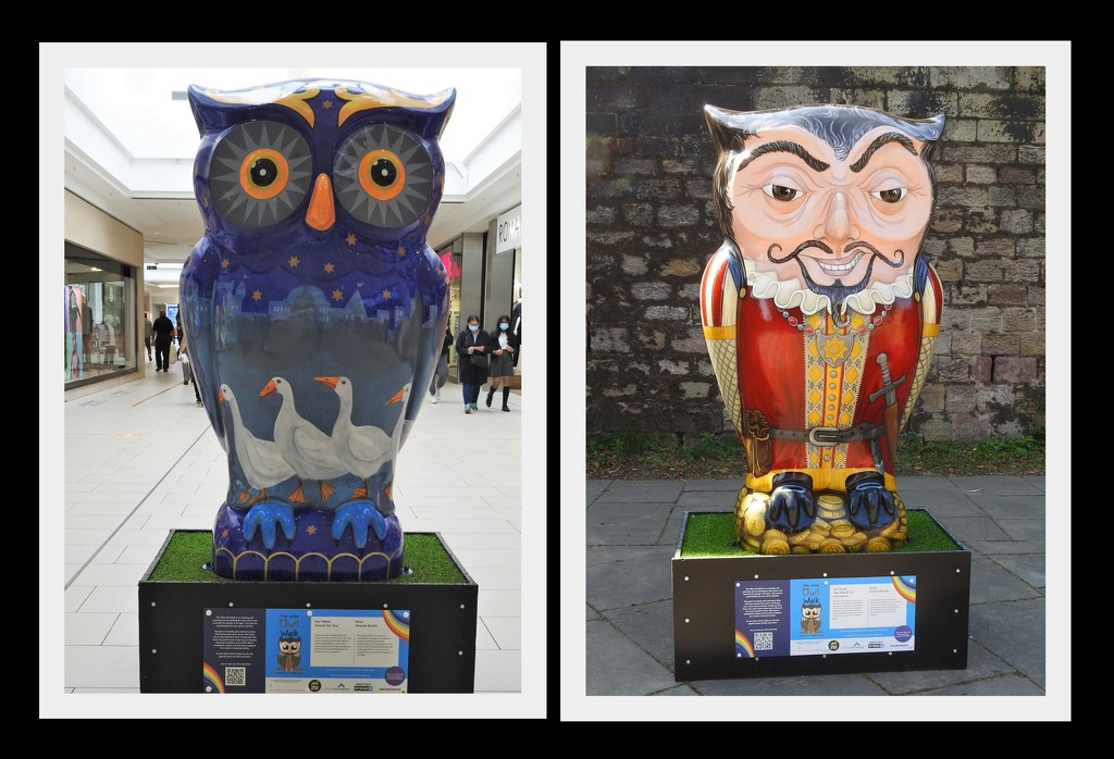 Owls 3 by oldjosh