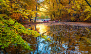 17th Oct 2020 - kyak on golden waters-