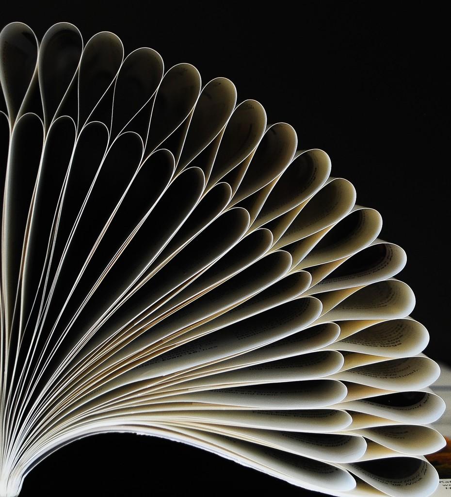 Book by sherimiya