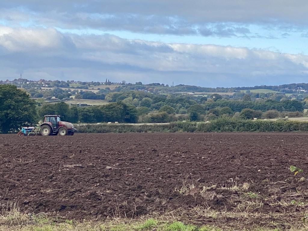 Farming by tinley23