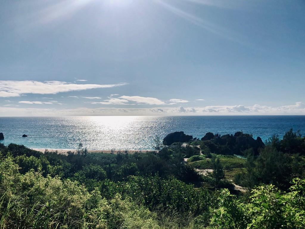 Hidden Cove by lisasavill