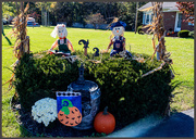 17th Oct 2020 - Neighbor's Fall Display