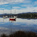 Calm waters of Huon River