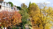 18th Oct 2020 - Colours of Autumn