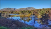 18th Oct 2020 - A stroll around Tarn Howes in the Lake District- one of my favourite places!