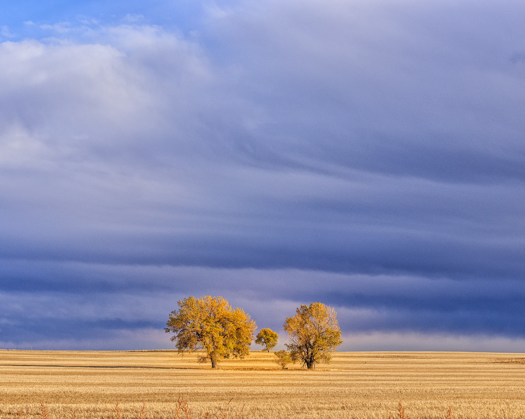 end of fall colors by aecasey