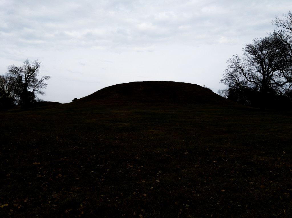 Cahokia Mounds by mallocarray