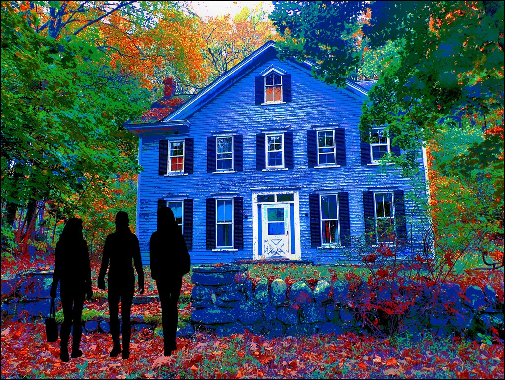Old Farmhouse Edit 6 by olivetreeann