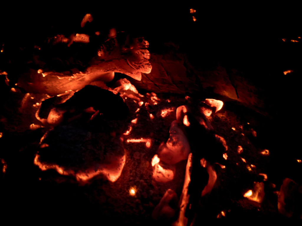 Embers by mallocarray