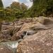 McClaren Falls