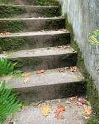 19th Oct 2020 - Stairway