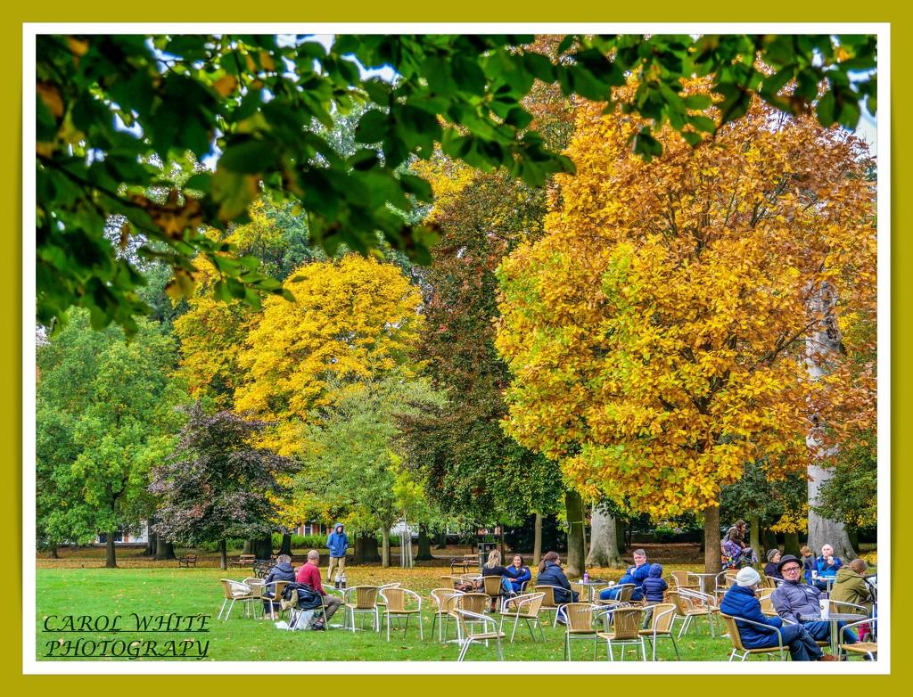 Elevenses In The Park by carolmw