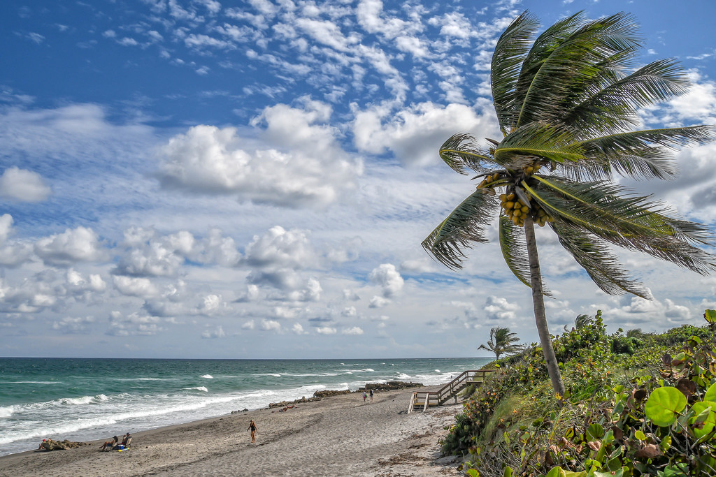 Jupiter Island by danette