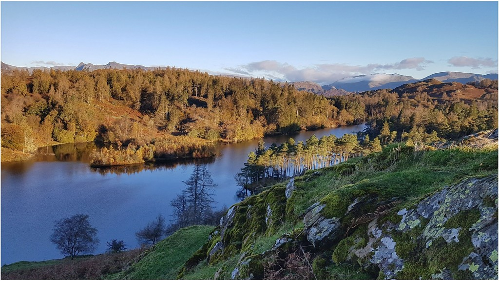 The last of Tarn Howes by lyndamcg