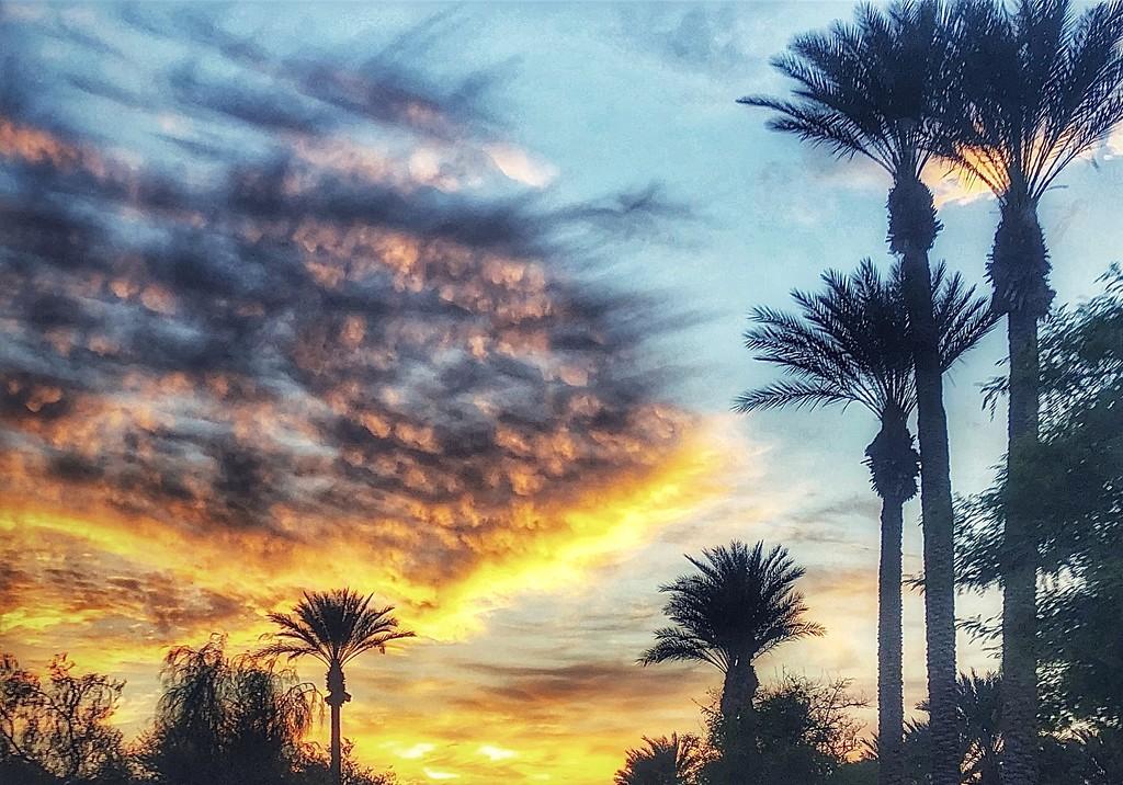 The Sky's Ablaze by redy4et