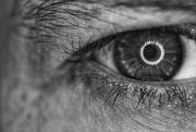 19th Oct 2020 - Eye Hairs