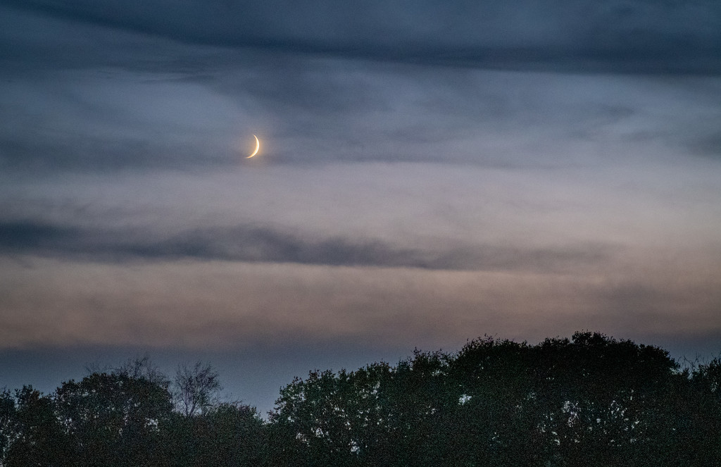 Moonrise at Vignouse... by vignouse