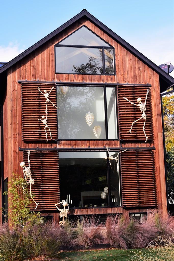 Skeleton House by sandlily