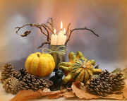18th Oct 2020 - Pumpkins and Pine cones.