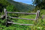 19th Oct 2020 - Brañas, Asturias