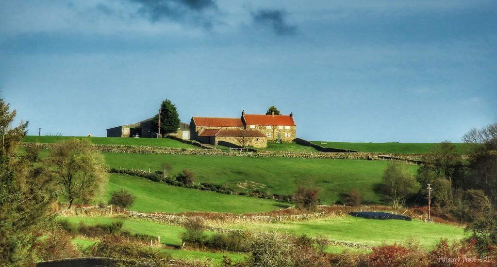 Hilltop farm by craftymeg