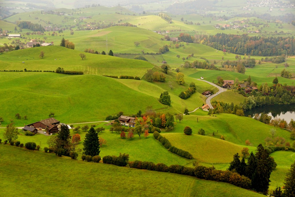 2020-10-20 rolling hills by mona65