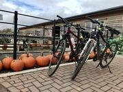 20th Oct 2020 - Pumpkin ride