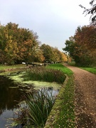 20th Oct 2020 - Autumn on the canal