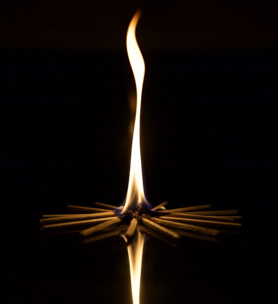 Flame  by gapandgain
