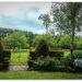 The Country Garden...