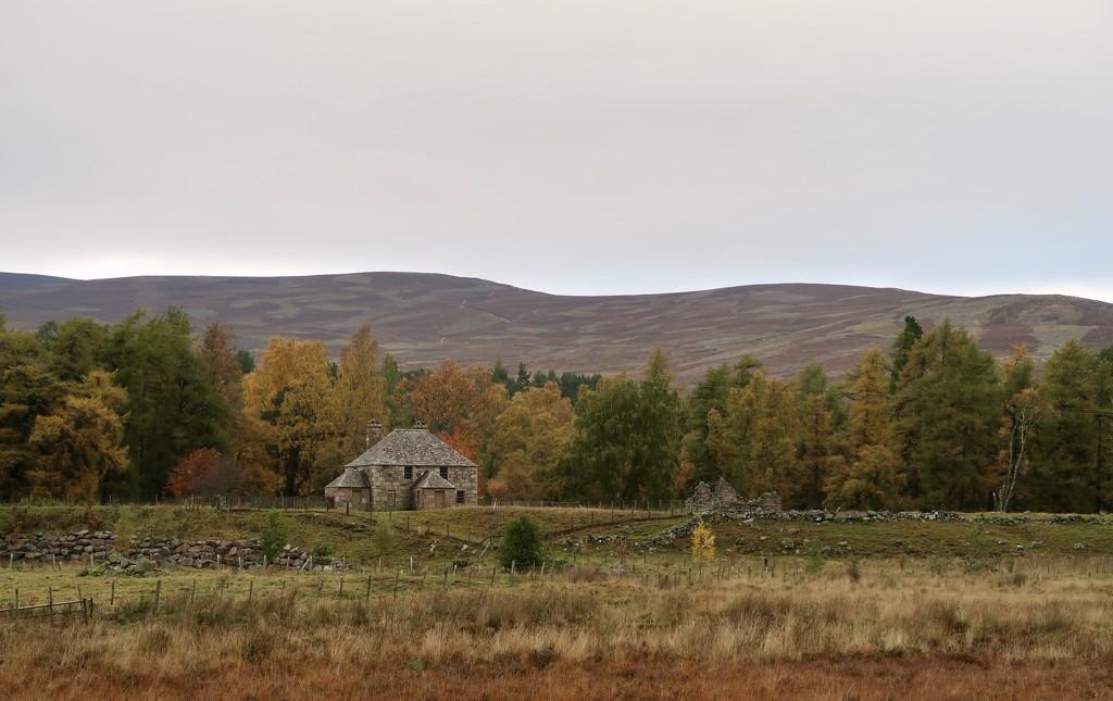 Gairnside in the Autumn by jamibann