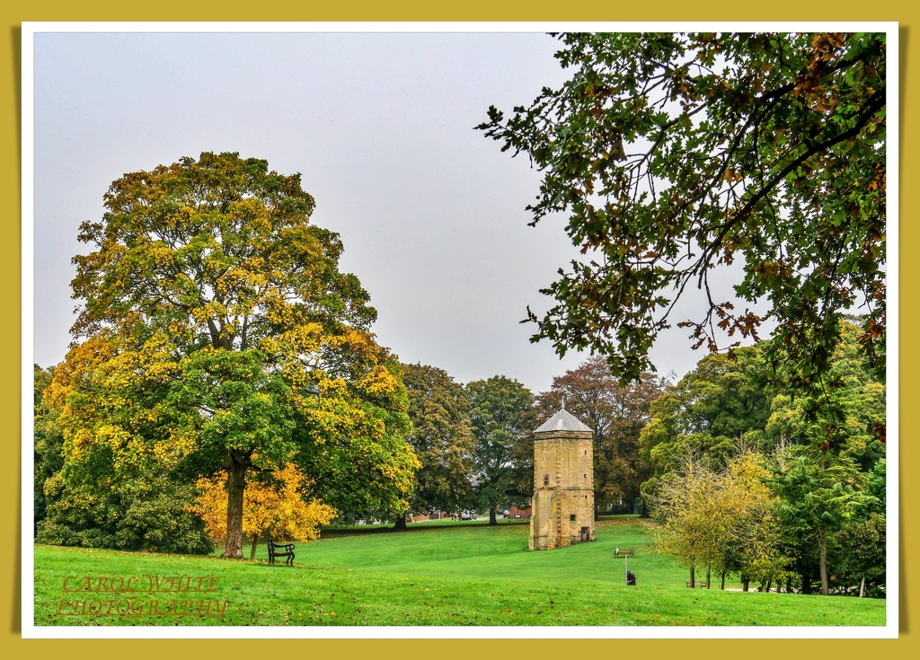 The Pigeon Tower,Abington Park by carolmw