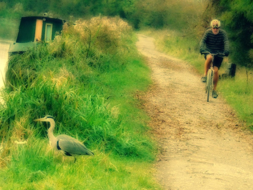 The Bloke, the Bike, the Bird and the Barge by ajisaac