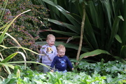 21st Oct 2020 - Playing in the jungle!
