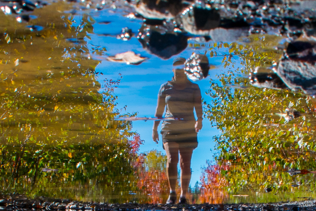 puddle reflections by novab