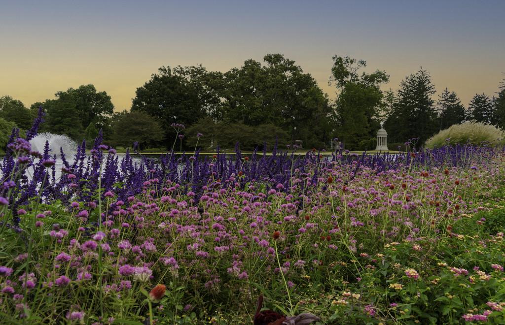 Spring Grove by cdonohoue