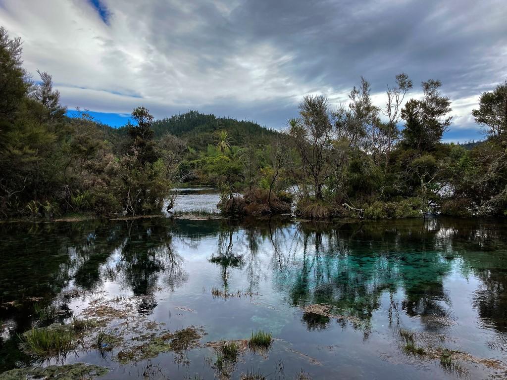 Te Waikoropupu Springs by kiwinanna