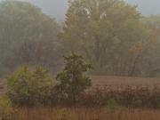22nd Oct 2020 - prairie landscape