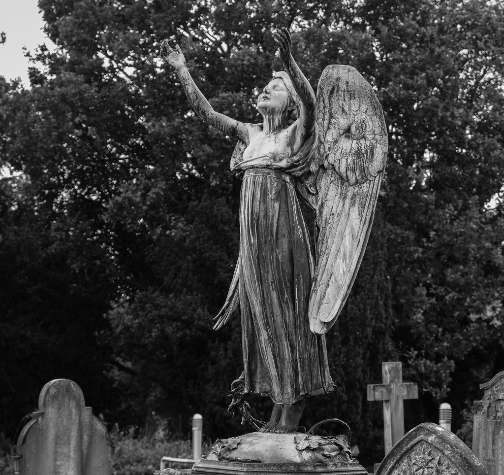 Local Cemetery by 365nick