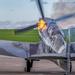 Spitfire! by rjb71
