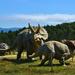 Jurassic Museum, Asturias