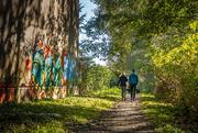 22nd Oct 2020 - Shell Trail walk