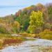 Fall Creek Oakville