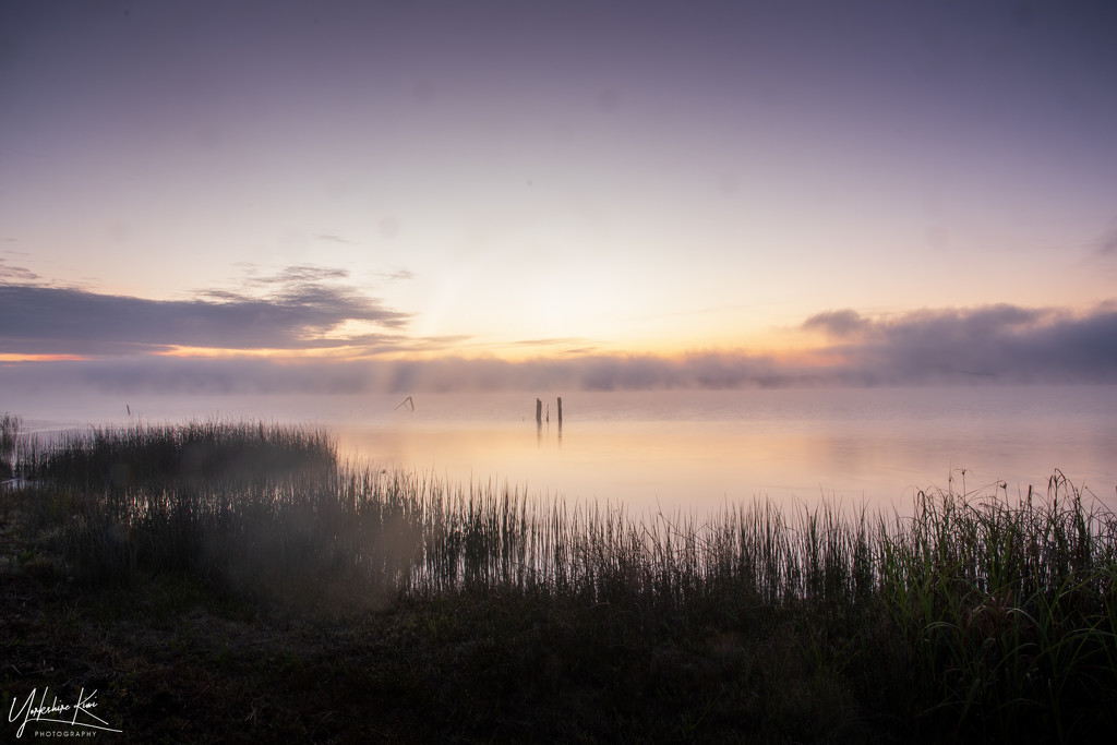 Mist rising over Lake Whangape by yorkshirekiwi