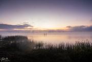 23rd Oct 2020 - Mist rising over Lake Whangape