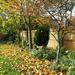 My Garden October
