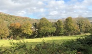 23rd Oct 2020 - View from the Footpath