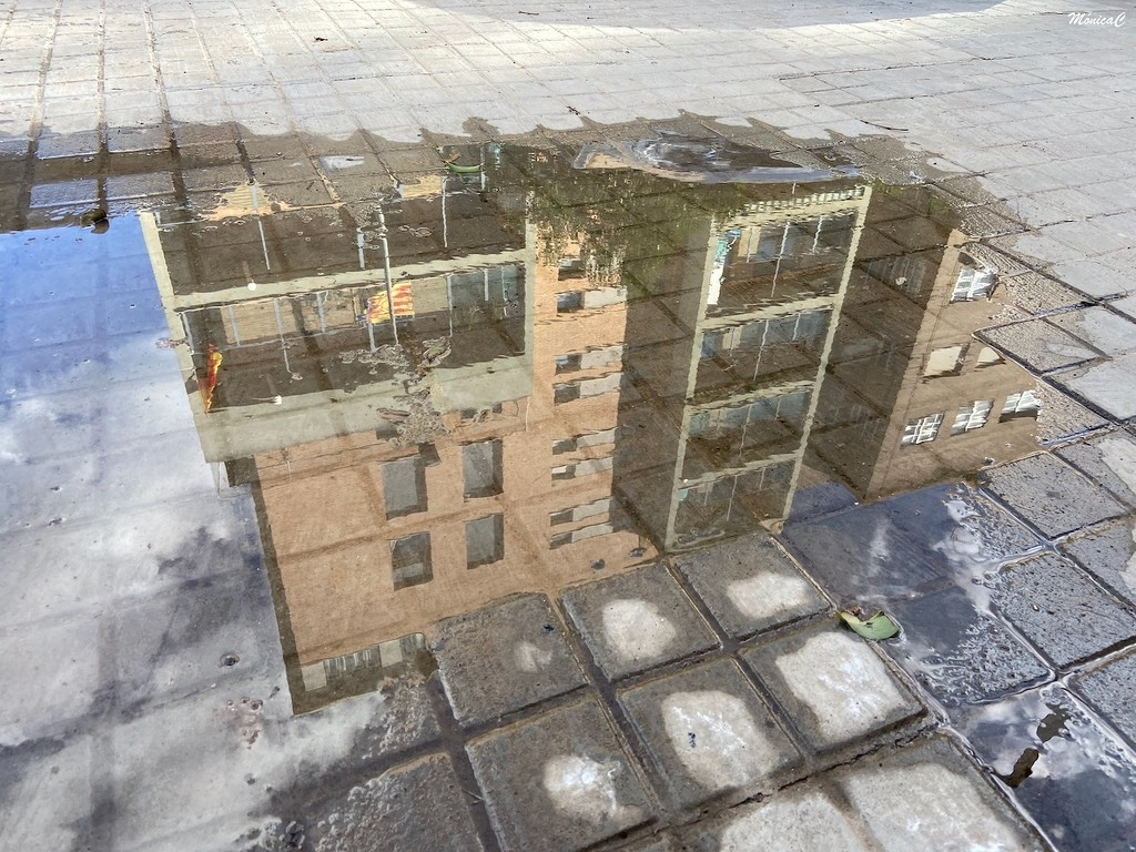 Puddle by monicac