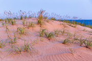 23rd Oct 2020 - Pink Morning Sand